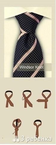 как завязывать галстук схема